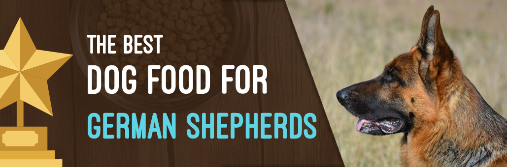 Best-Dog-Food-for-German-Shepherds